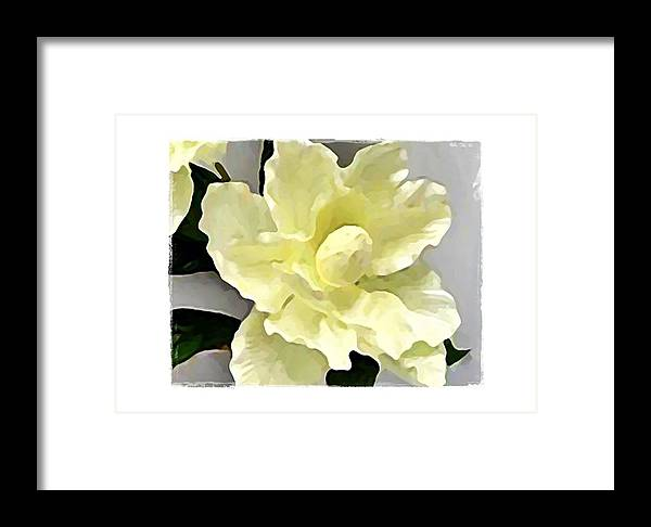 White Framed Print featuring the digital art Floral Series I by Terry Mulligan