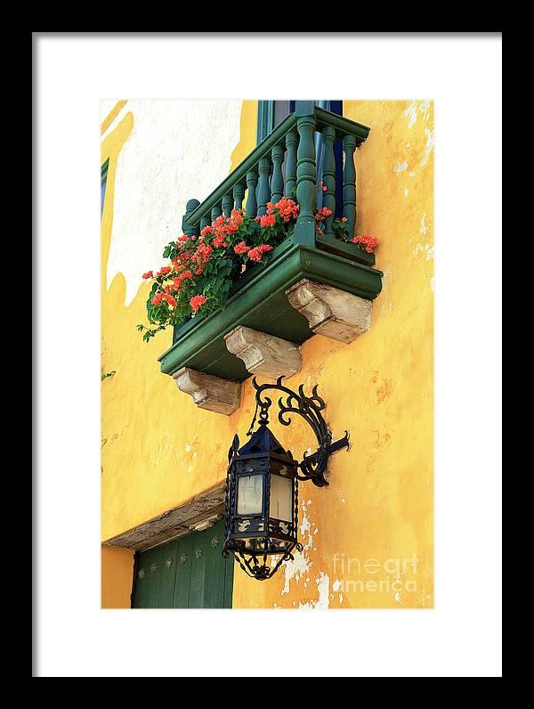 Flores Rojas En Cartagena Framed Print featuring the photograph Flores Rojas En Cartagena by John Rizzuto