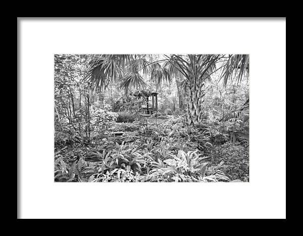 Garden Framed Print featuring the photograph Florida Garden Scene_009 by Pat Canova