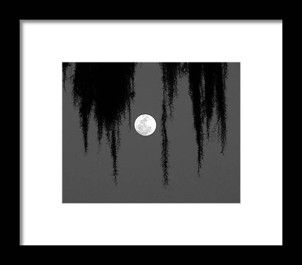 Nature Framed Print featuring the photograph Florida Moon by Peg Urban