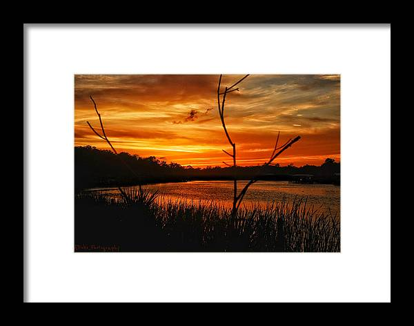 Sunset Framed Print featuring the photograph Florida Sunset by Allen Williamson