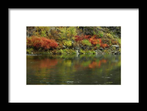 River Framed Print featuring the photograph Flow Of Autumn by Donna Blackhall