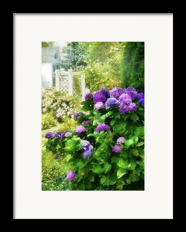 Suburbanscenes Framed Print featuring the photograph Flower - Hydrangea - Lovely Hydrangea by Mike Savad