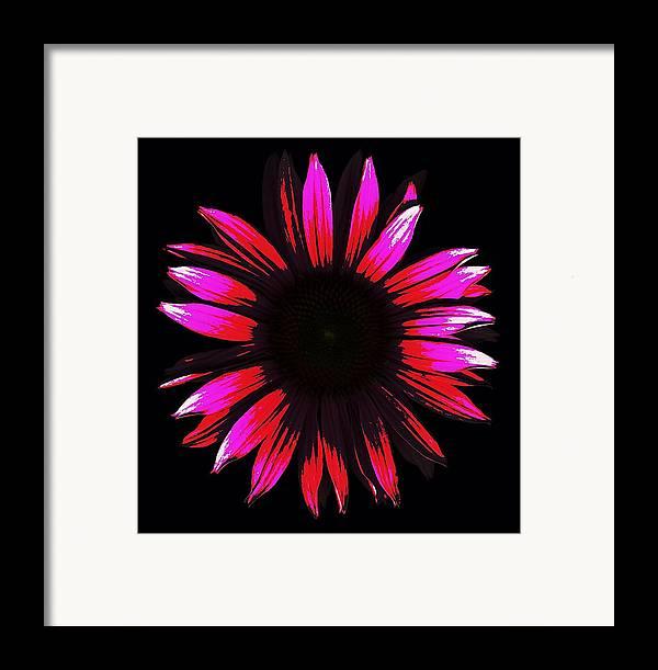 Scanography Framed Print featuring the digital art Flower A Go-go by Deborah J Humphries