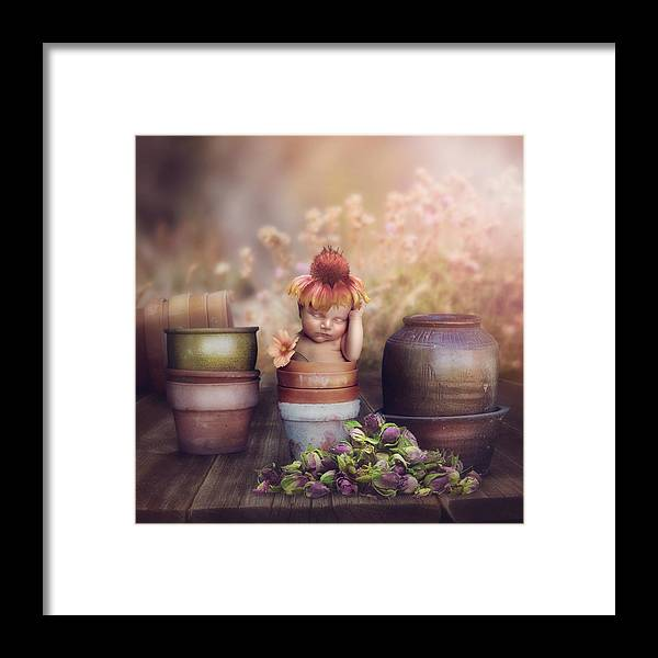 Flowers Framed Print featuring the photograph Flower Baby by Cindy Grundsten