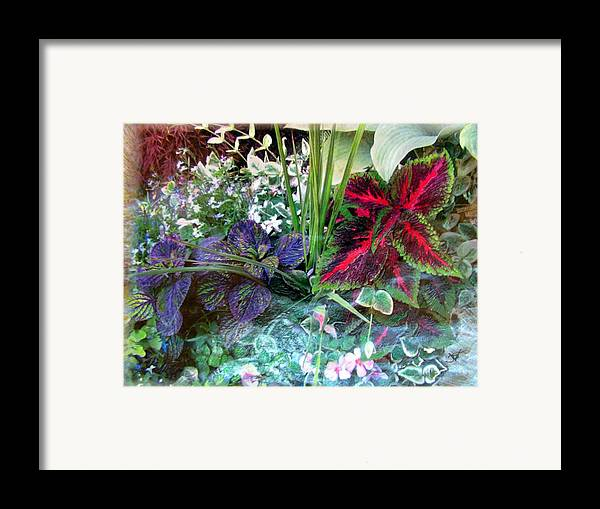 Flower Box Framed Print featuring the mixed media Flower Box by John Vandebrooke