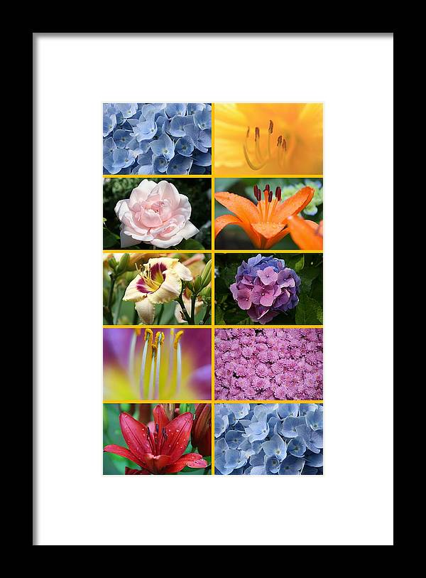 Flowers Framed Print featuring the photograph Flower Collage 1 by Imagery-at- Work