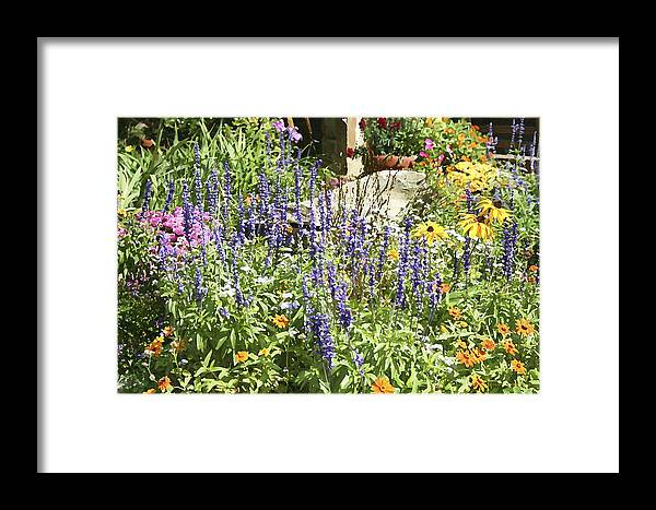 Flower Framed Print featuring the photograph Flower Garden by Margie Wildblood