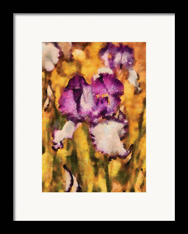 Abstract Framed Print featuring the photograph Flower - Iris - Diafragma Violeta by Mike Savad