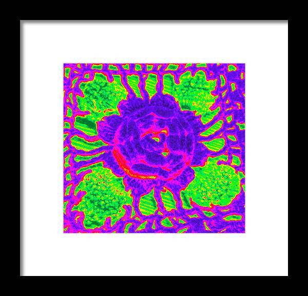 Flower Framed Print featuring the photograph Flower Power by Jennifer Coleman