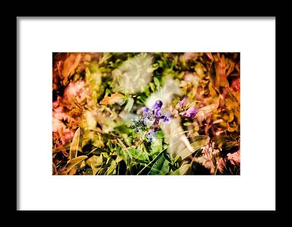 Framed Print featuring the photograph Flower Power by Jikaiah Stevens