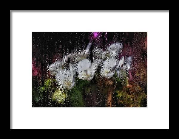 Flowers Framed Print featuring the photograph Flower Shop Window 3 by Robert Ullmann