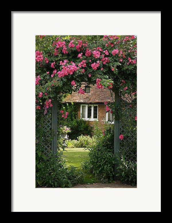 England Framed Print featuring the photograph Flower Trellis England by Michael Hudson