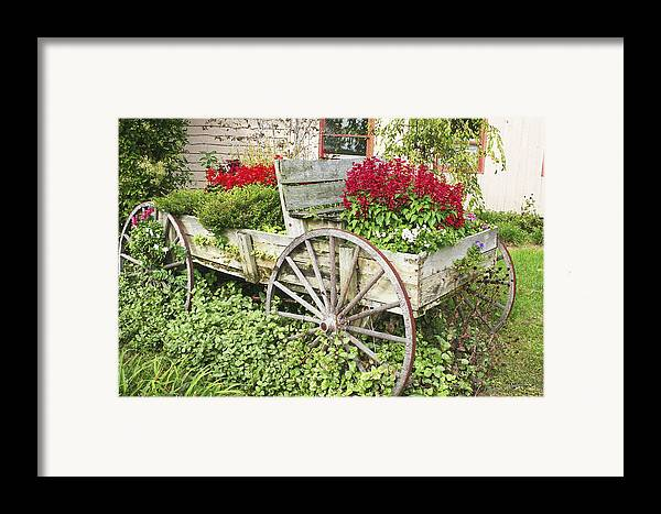 Wagon Framed Print featuring the photograph Flower Wagon by Margie Wildblood