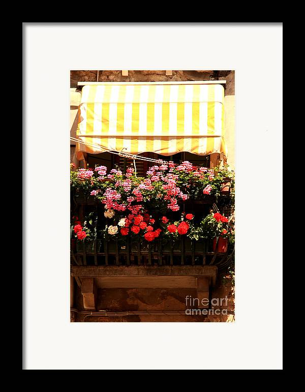 Flowers Framed Print featuring the photograph Flowers And Awning In Venice by Michael Henderson