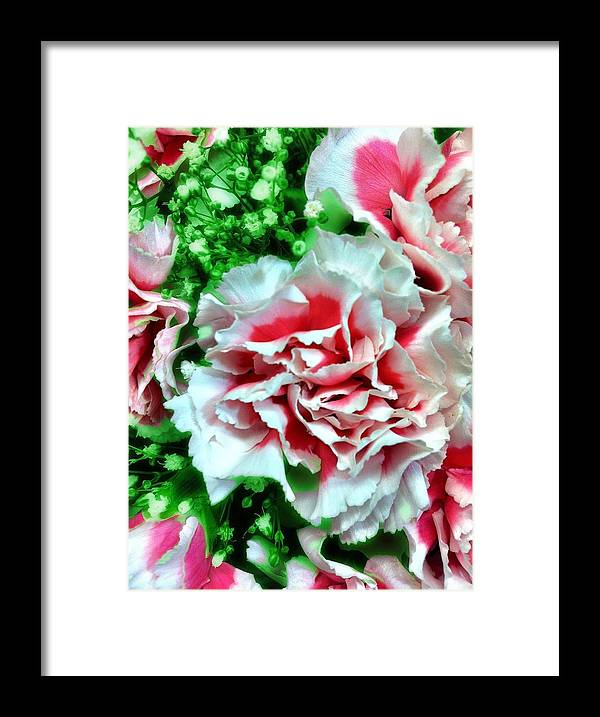 Flowers Framed Print featuring the photograph Flowers by Carlos Avila