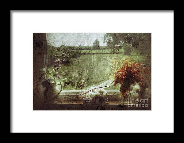 Floral Framed Print featuring the photograph Flowers In A Window by John Myers