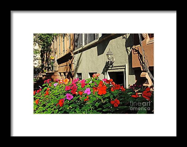 Flowers Framed Print featuring the photograph Upper West Side, New York by Zalman Latzkovich