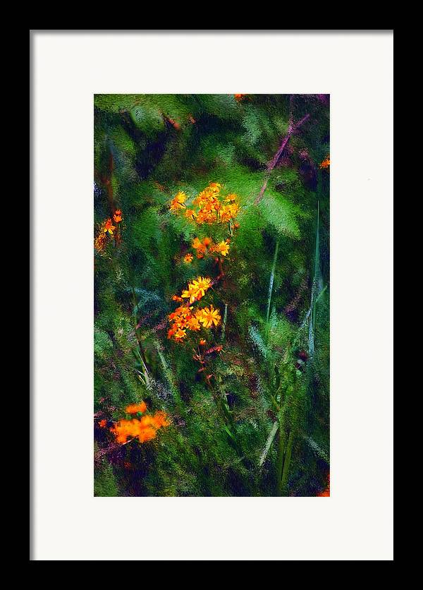 Digital Photography Framed Print featuring the digital art Flowers In The Woods At The Haciendia by David Lane