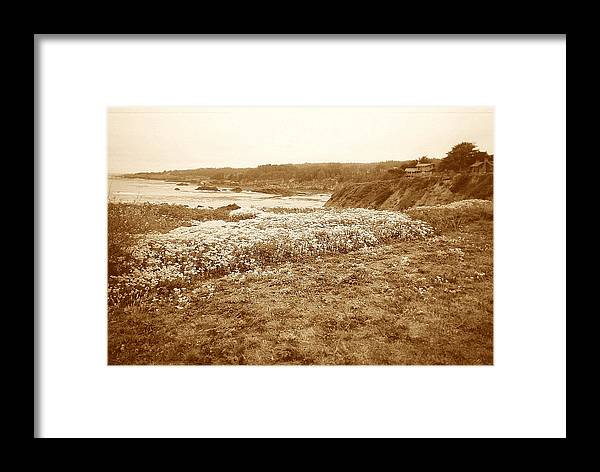 Seascape Framed Print featuring the photograph Flowers On The Bluff by Maggie Cruser
