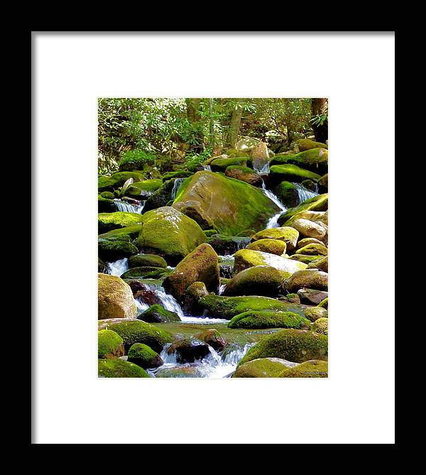 Nature Framed Print featuring the photograph Flowing Mountain Stream by Johann Todesengel