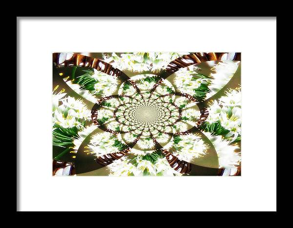 Butterfly Framed Print featuring the photograph Fly Away Butterfly by Dottie Dees