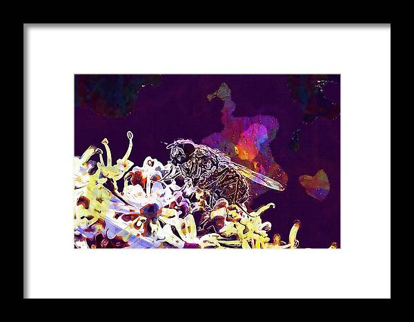 Fly Framed Print featuring the digital art Fly Housefly Insect Close Macro by PixBreak Art