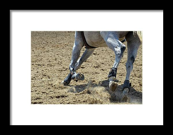 Horse Framed Print featuring the photograph Flying Dust by Joy Alfandre