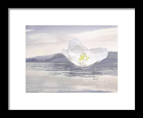 Silverlake Framed Print featuring the digital art Flying Flower by Viktor SavchenkoThe flower flying on Blue WooThe flower flying on Blue Woodd