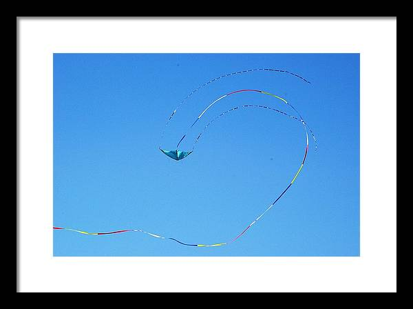 Sky Framed Print featuring the photograph Flying High 2 by Veron Miller