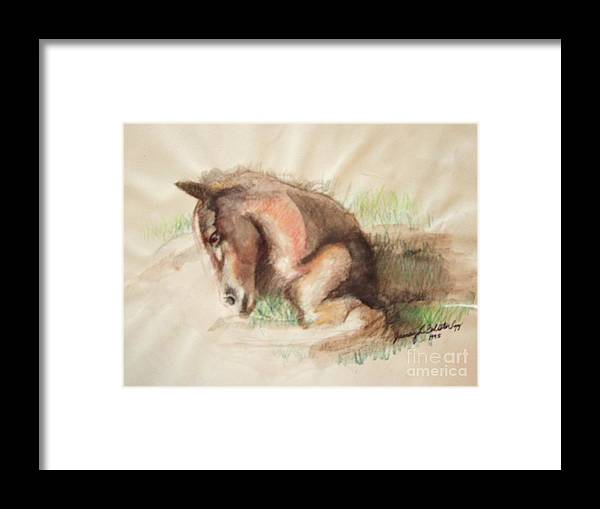 Horses Framed Print featuring the painting Foal by Jamey Balester
