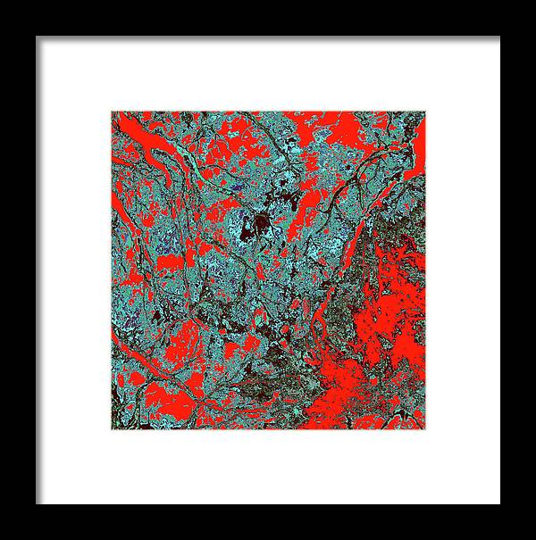 Trees Framed Print featuring the photograph Focus Of Attention 18 by Gary Bartoloni