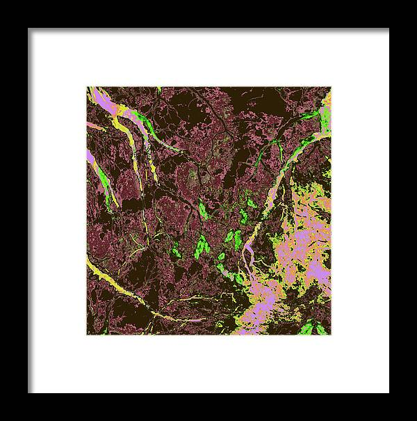 Trees Framed Print featuring the photograph Focus Of Attention 28 by Gary Bartoloni
