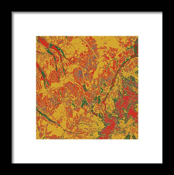 Trees Framed Print featuring the photograph Focus Of Attention 44 by Gary Bartoloni