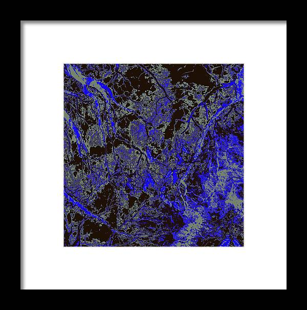 Trees Framed Print featuring the photograph Focus Of Attention 51 by Gary Bartoloni