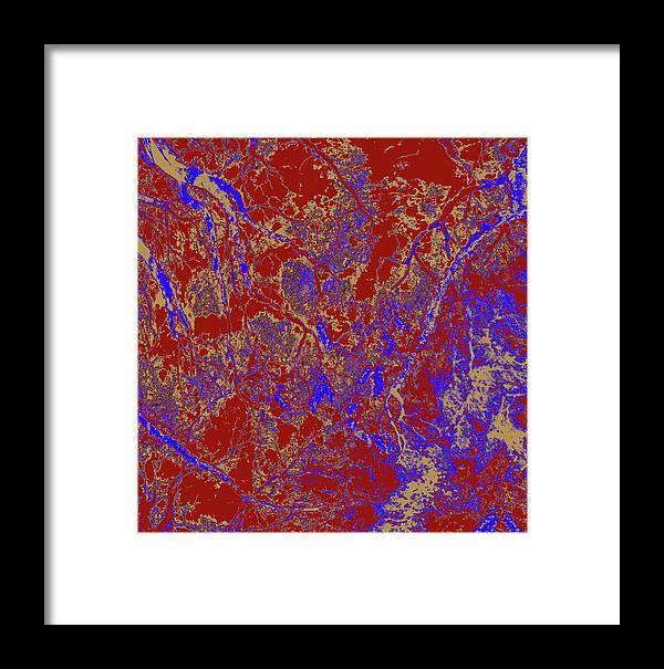 Trees Framed Print featuring the photograph Focus Of Attention 52 by Gary Bartoloni