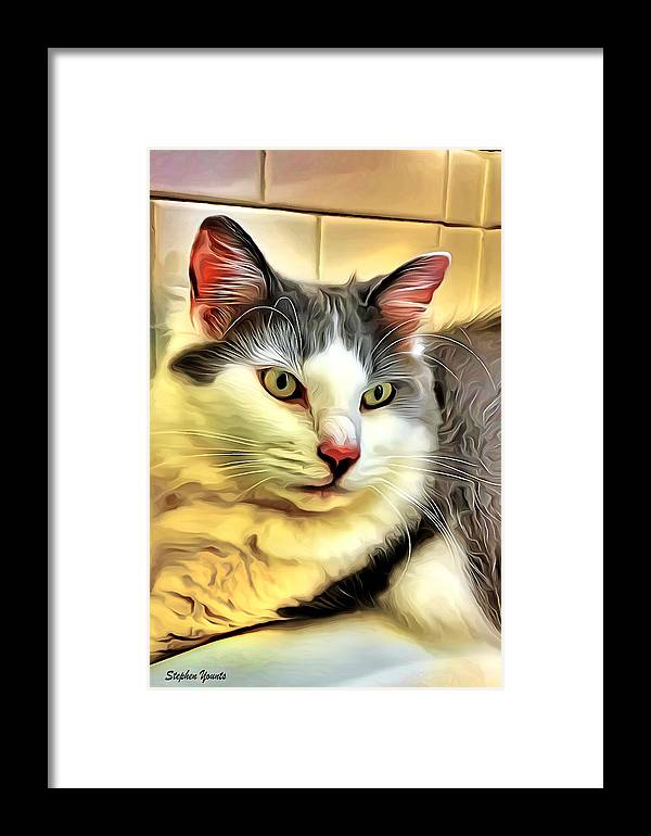 Cat Framed Print featuring the digital art Focused Feline by Stephen Younts