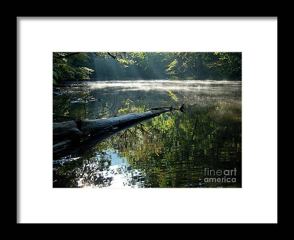 Stream Framed Print featuring the photograph Fog And Reflection Of Stream by Michelle Himes