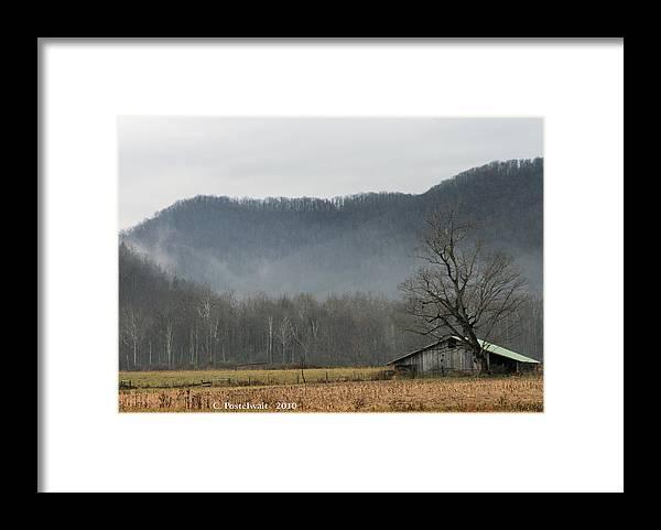 Barns Framed Print featuring the photograph Foggy Farm Scene by Carolyn Postelwait