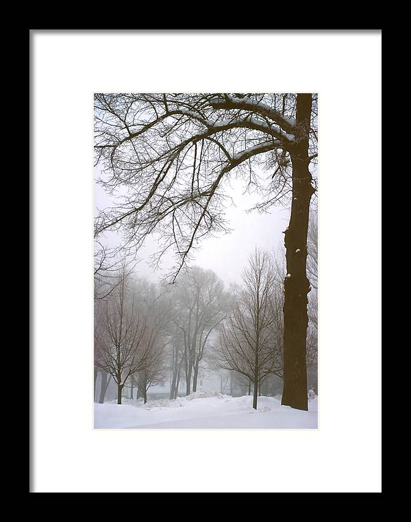 Fog Framed Print featuring the photograph Foggy Morning Landscape 10 by Steve Ohlsen