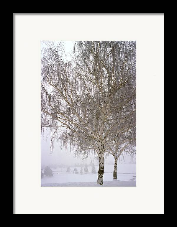 Nature Framed Print featuring the photograph Foggy Morning Landscape 12 by Steve Ohlsen