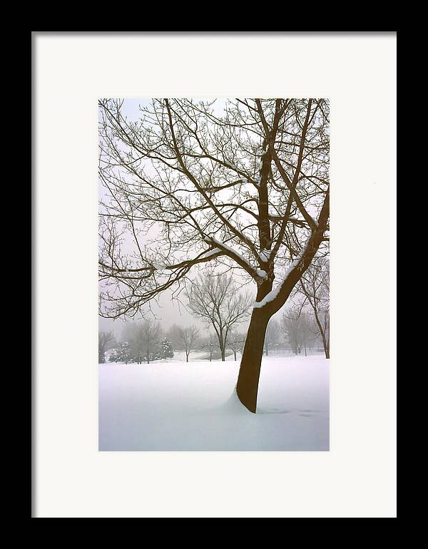 Fog Framed Print featuring the photograph Foggy Morning Landscape 14 by Steve Ohlsen