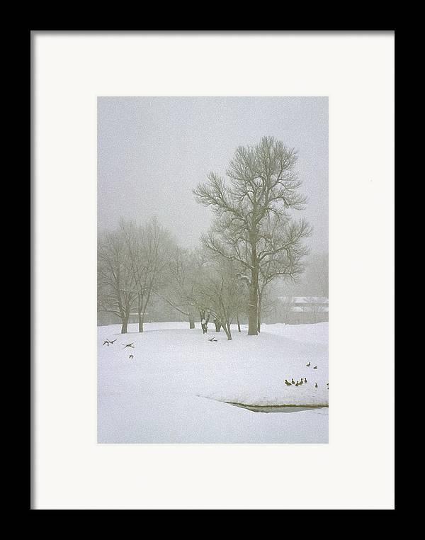 Fog Framed Print featuring the photograph Foggy Morning Landscape 2 by Steve Ohlsen