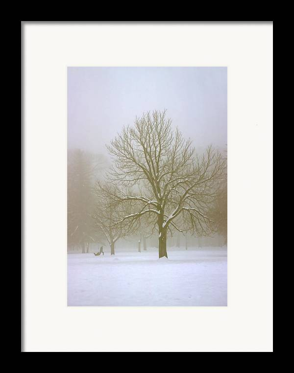 Nature Framed Print featuring the photograph Foggy Morning Landscape 7 by Steve Ohlsen