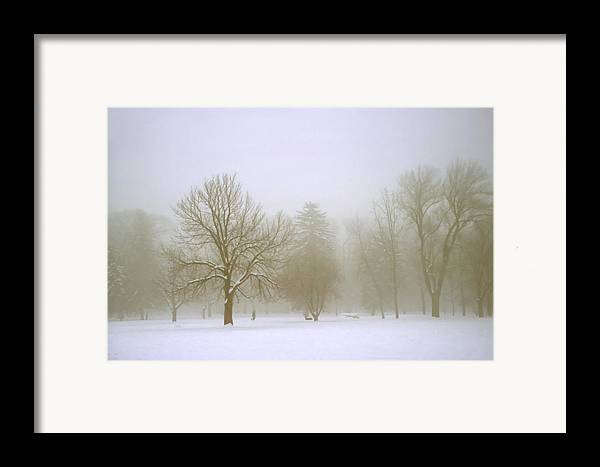 Nature Framed Print featuring the photograph Foggy Morning Landscape 8 by Steve Ohlsen