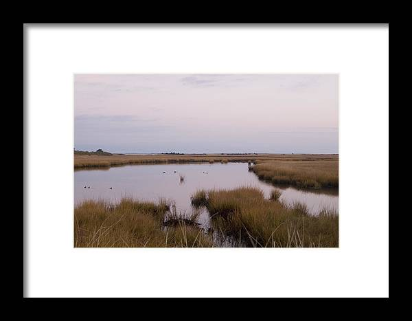 Nantucket Framed Print featuring the photograph Folgers Marsh Nantucket by Henry Krauzyk