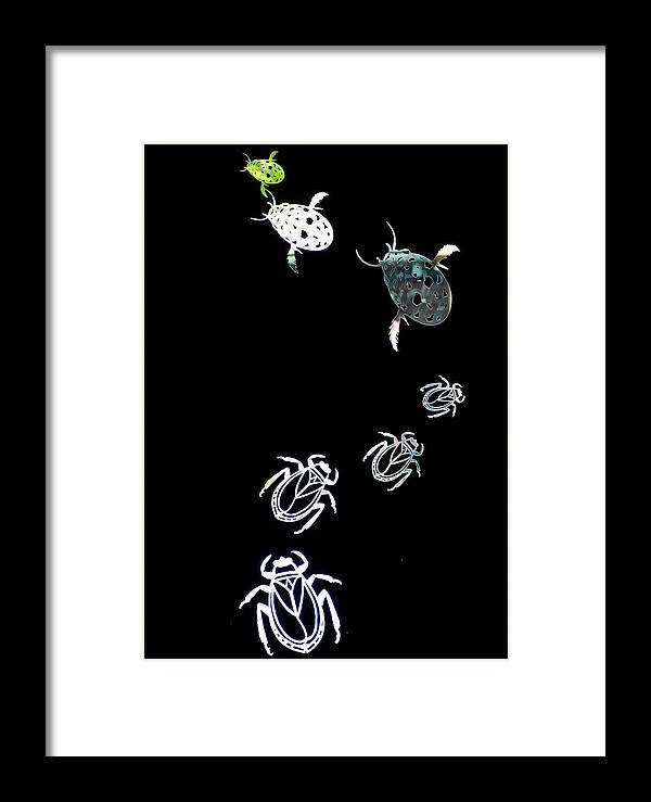 Bugs Framed Print featuring the photograph Follow The Leader by Cherie Duran
