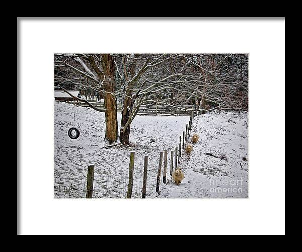 Sheep Framed Print featuring the photograph Follow the leader by Diana Nault