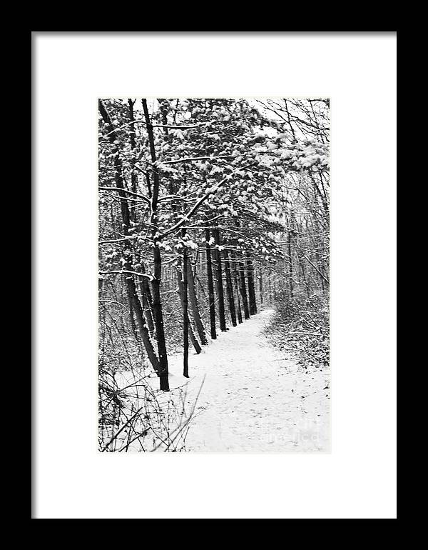 Nature Framed Print featuring the photograph Follow The Snowy Trail by Robin Lynne Schwind