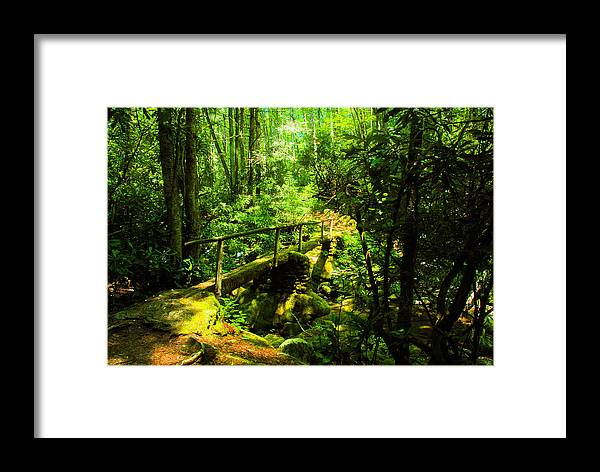 Art Framed Print featuring the painting Foot Bridge by David Lee Thompson
